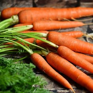 soft-carrots-may-destroy-your-juicer