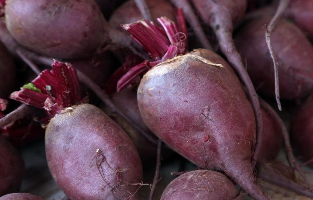 beetroot-cures-anemia