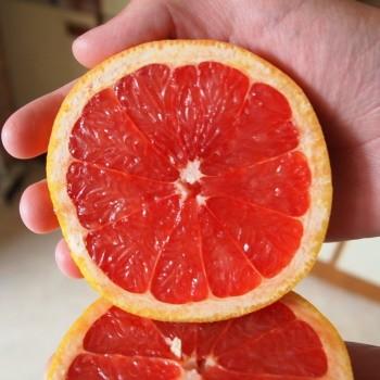 juice-with-grapefruit