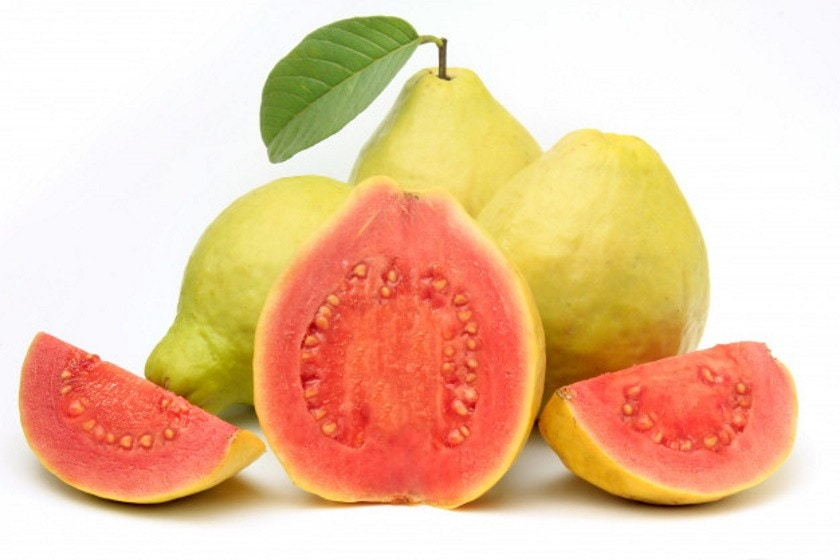 guava-juice-recipe-2